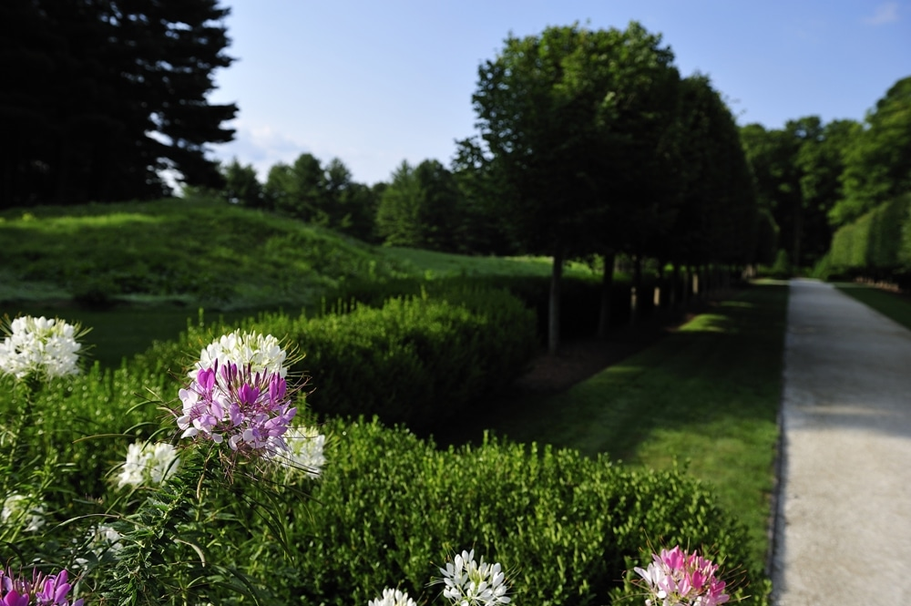 Tourico Vacations on Massachusetts: Experience the Luxury of Wheatleigh Hotel in Massachusetts