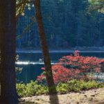 Myles Standish State Park and Forest in Plymouth, Massachusetts