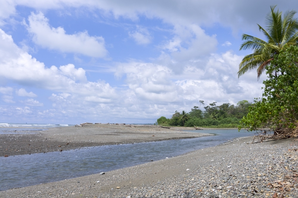 Osa Conservation Hatchery – Costa Rica